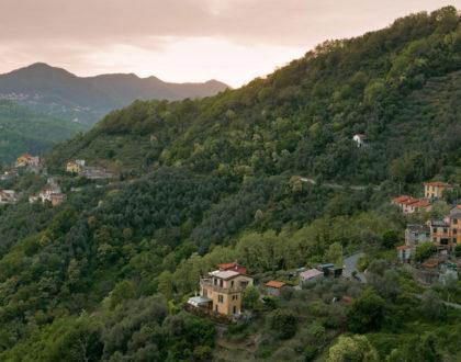 Weekend alla ricerca di Funghi in Liguria